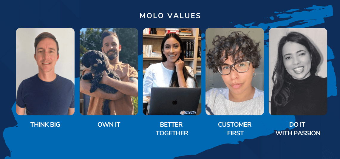 Why are Molo's values so important?